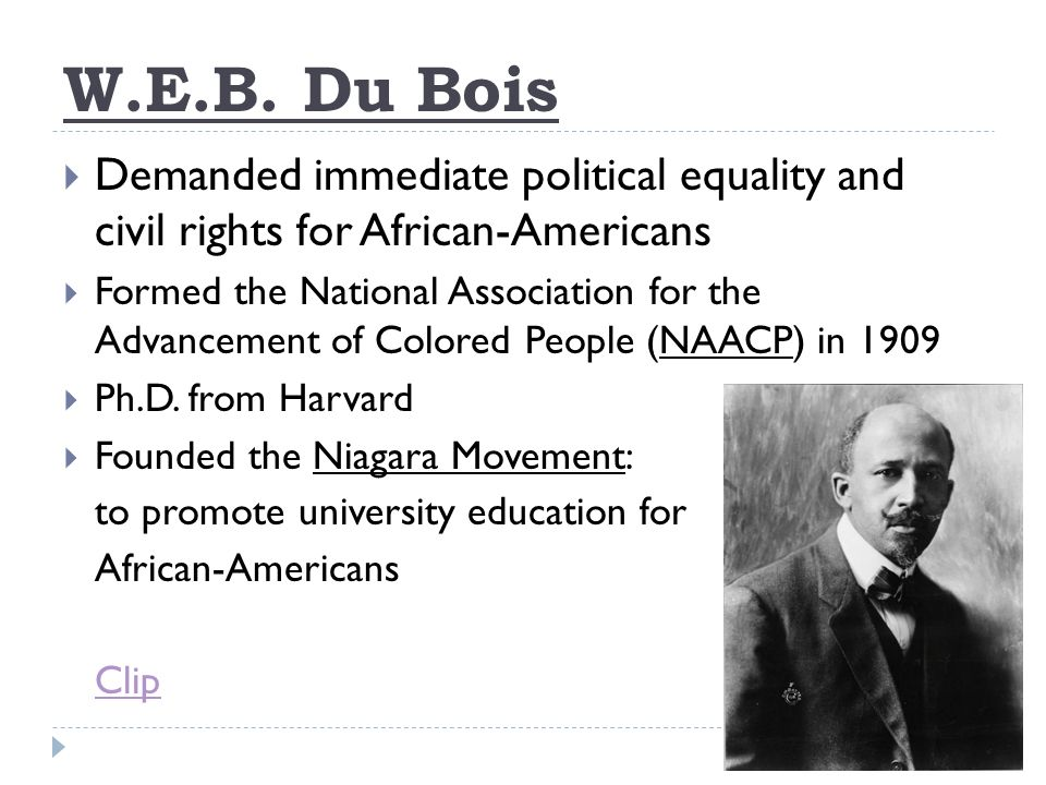 Booker T Washington And Web Dubois Venn Diagram Ukrandiffusion