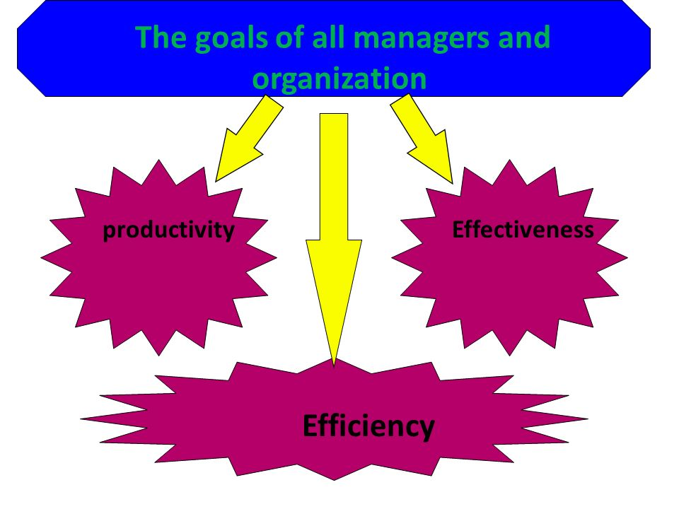 The goals of all managers and organization productivity Effectiveness Efficiency