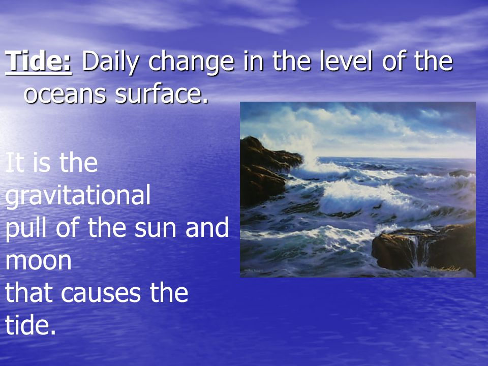The ocean is divided into two general environments.