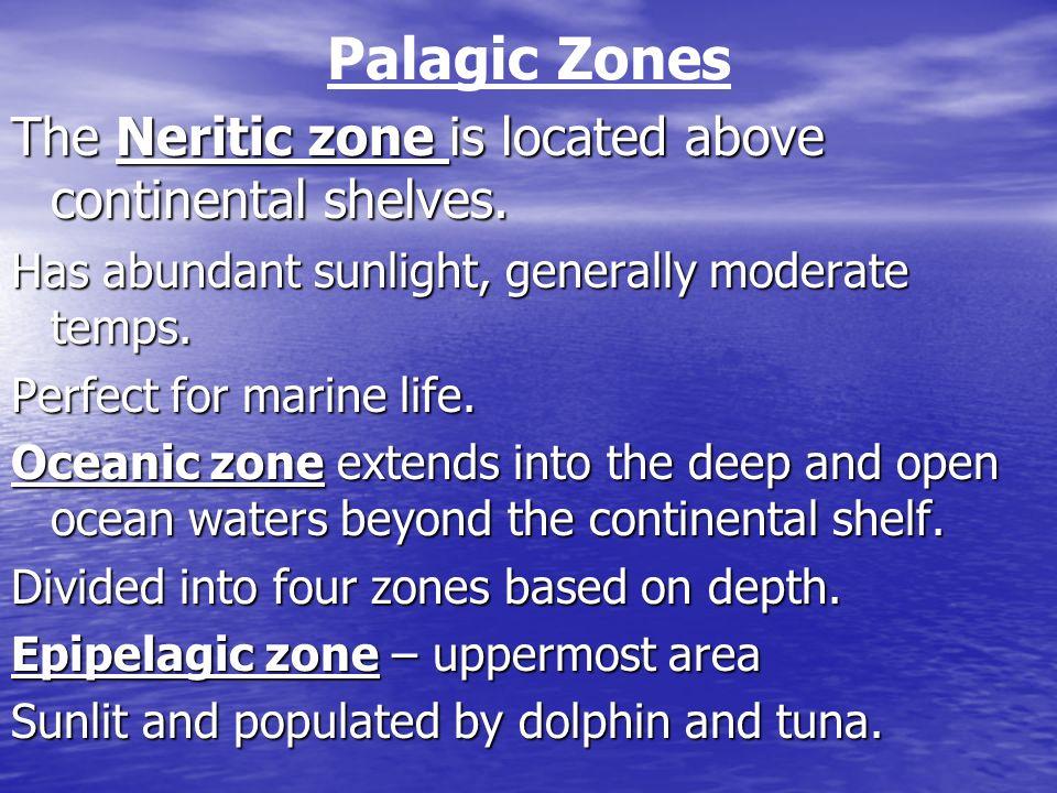 Mesopelagic, bathypelagic, and abyssopelagic zones occur at increasing depths.