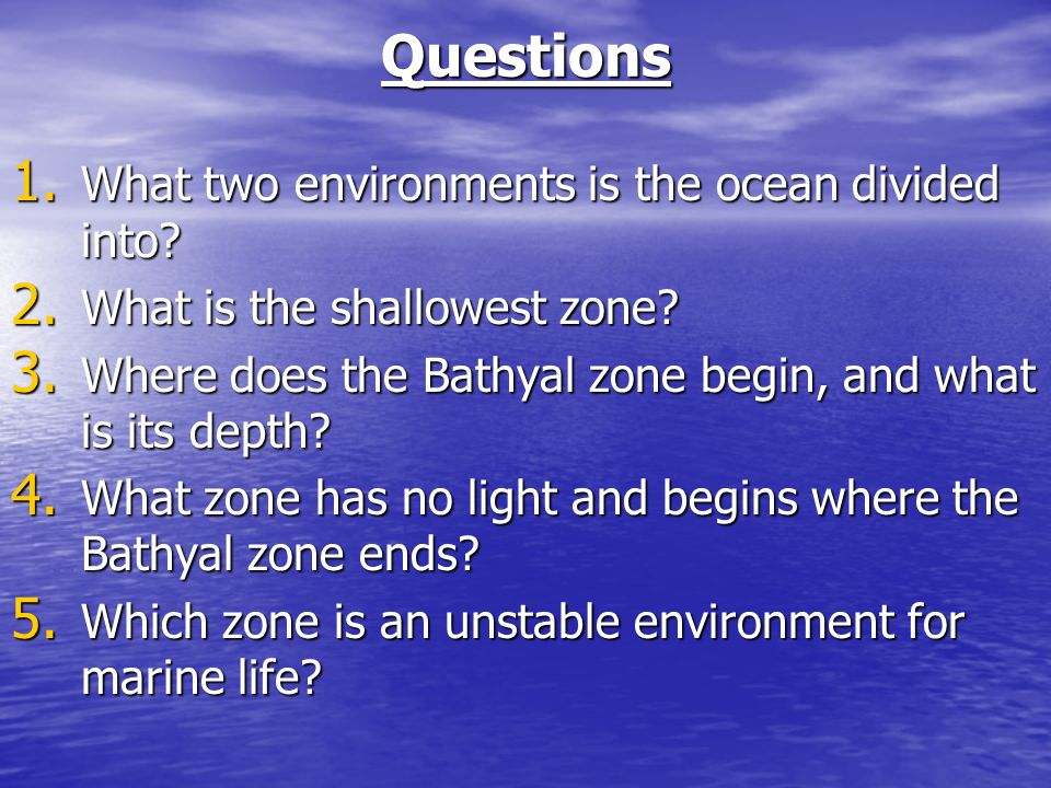 Questions 1. What two environments is the ocean divided into.