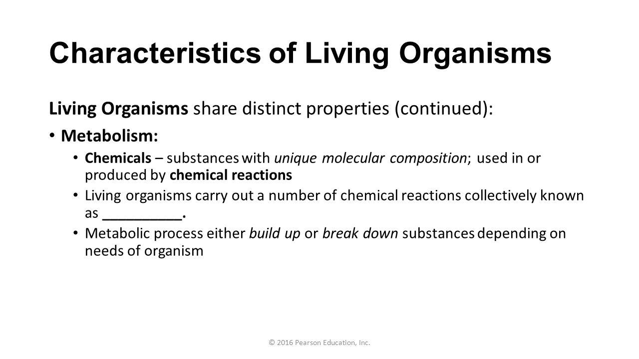 sci 230 characteristics of living organisms