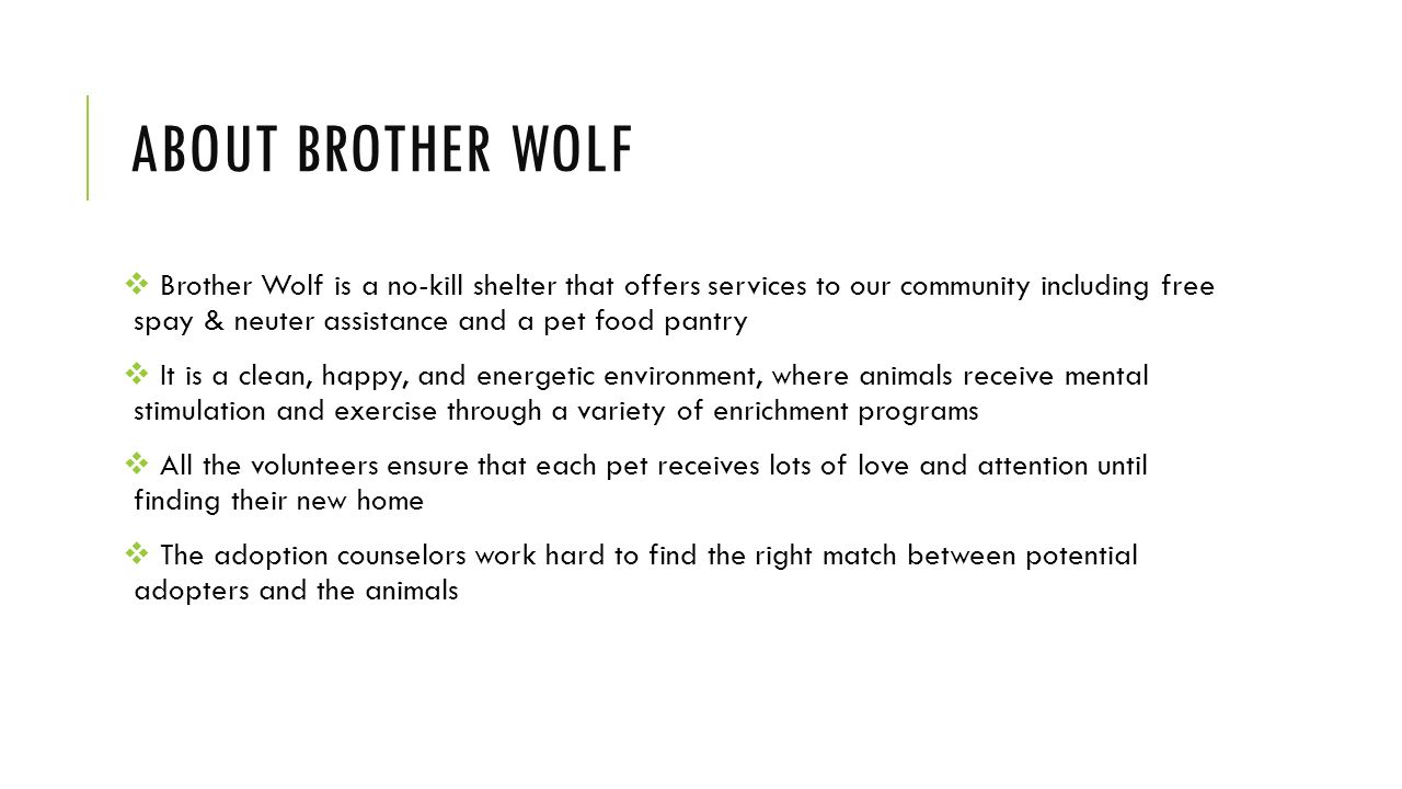 Research Paper On Animal Cruelty