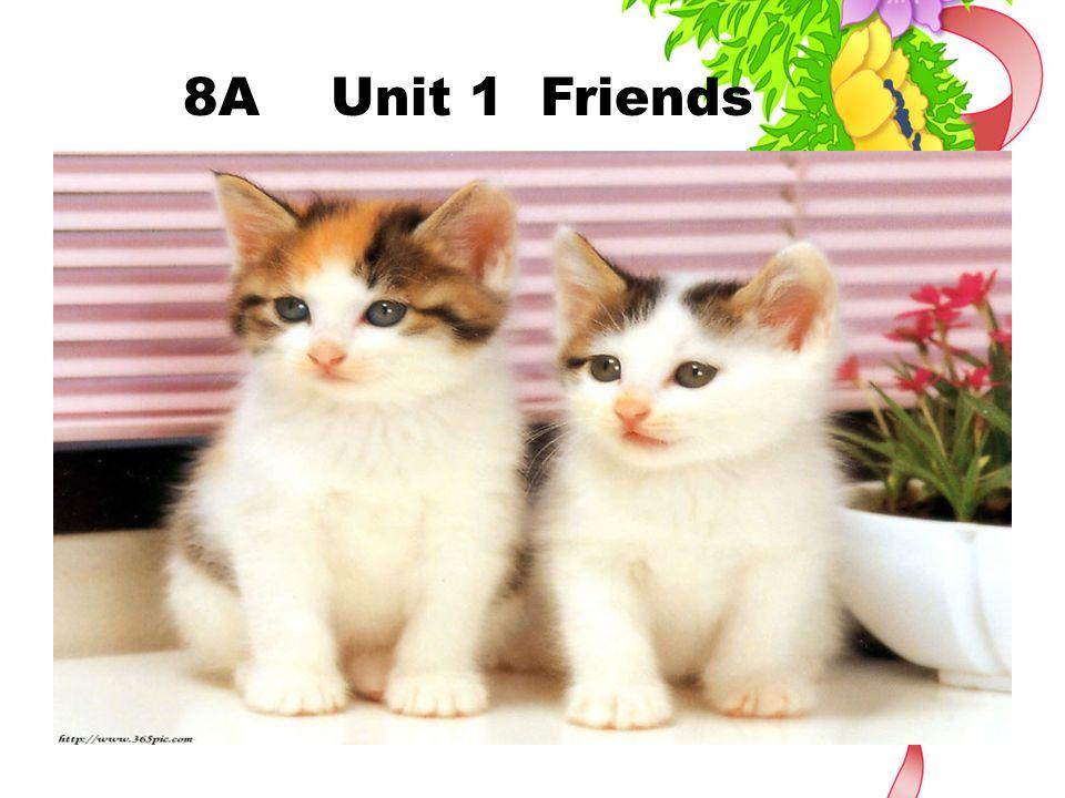 8A Unit 1 Friends