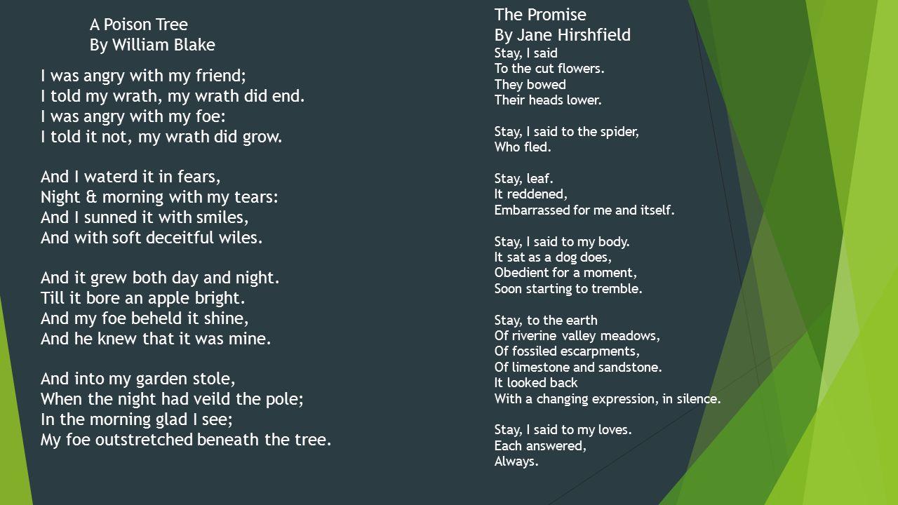 a poison apple essay
