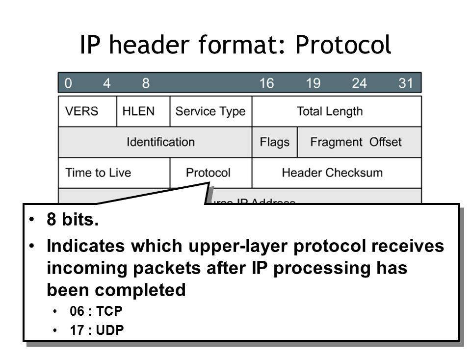 IP header format: Protocol 8 bits.