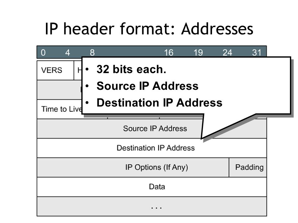 IP header format: Addresses 32 bits each. Source IP Address Destination IP Address 32 bits each.