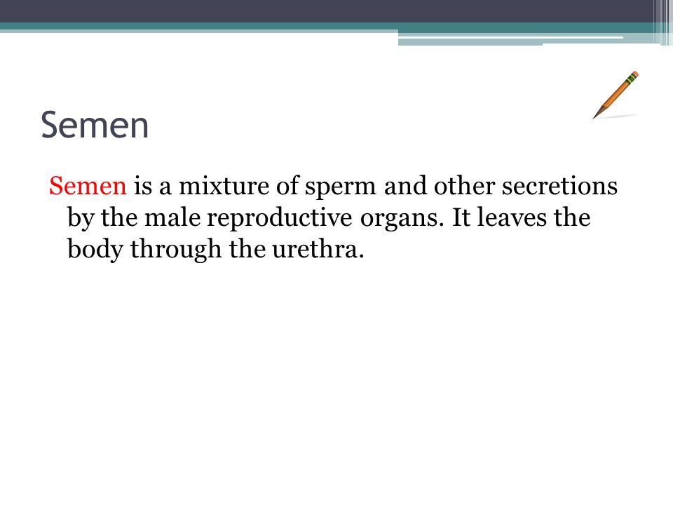 Semen Semen is a mixture of sperm and other secretions by the male reproductive organs.