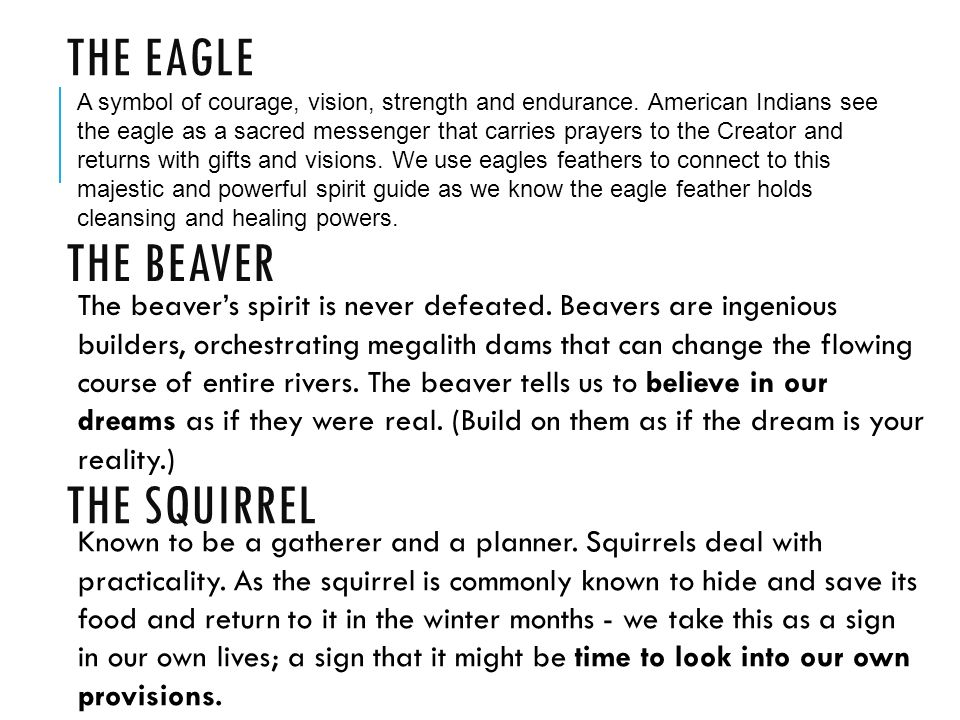 In The Beginning First Encounters Native American Myths 1600s