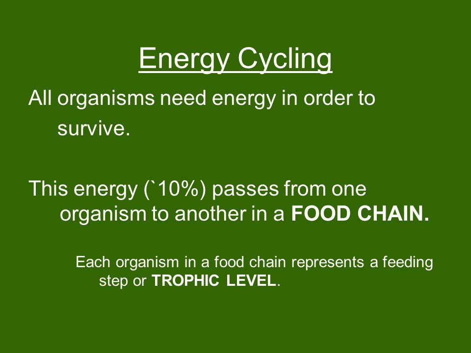 Energy Cycling All organisms need energy in order to survive.