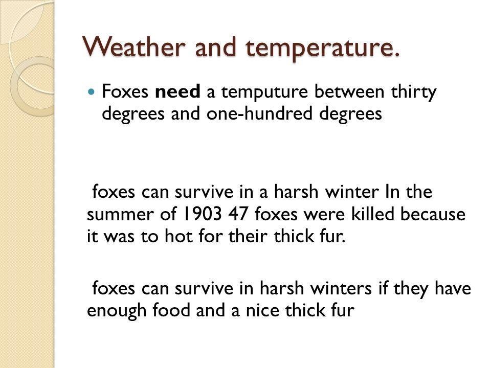 Where do foxes live.