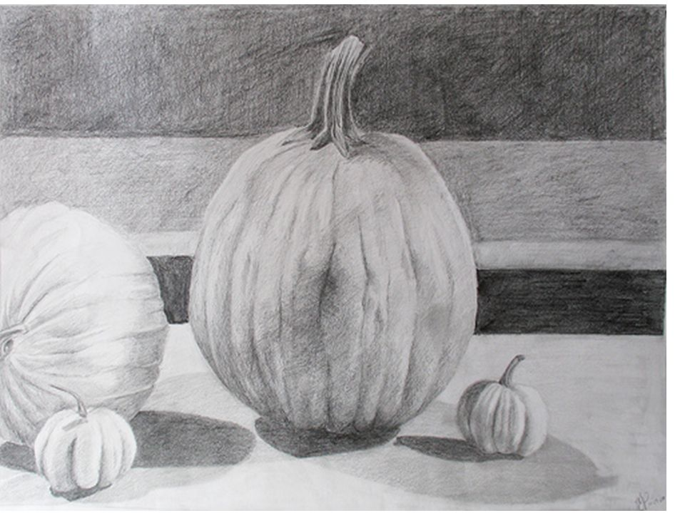 Drawing With No Lines : Charcoal pencil techniques objective: you will learn various