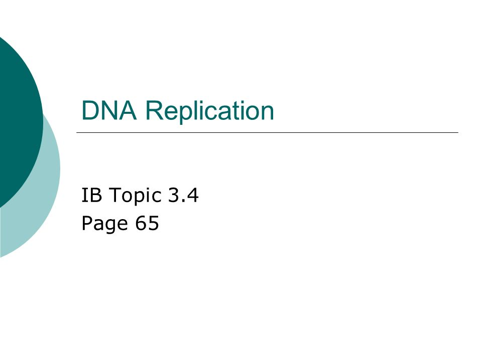 Dna replication ib topic 34 page 65 answers to your homework 8 1 dna replication ib topic 34 page 65 ccuart Gallery