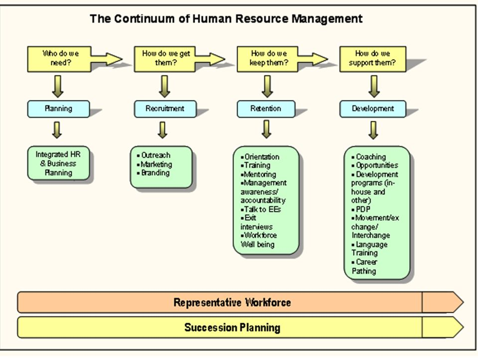 Hr Specialist Training Plan