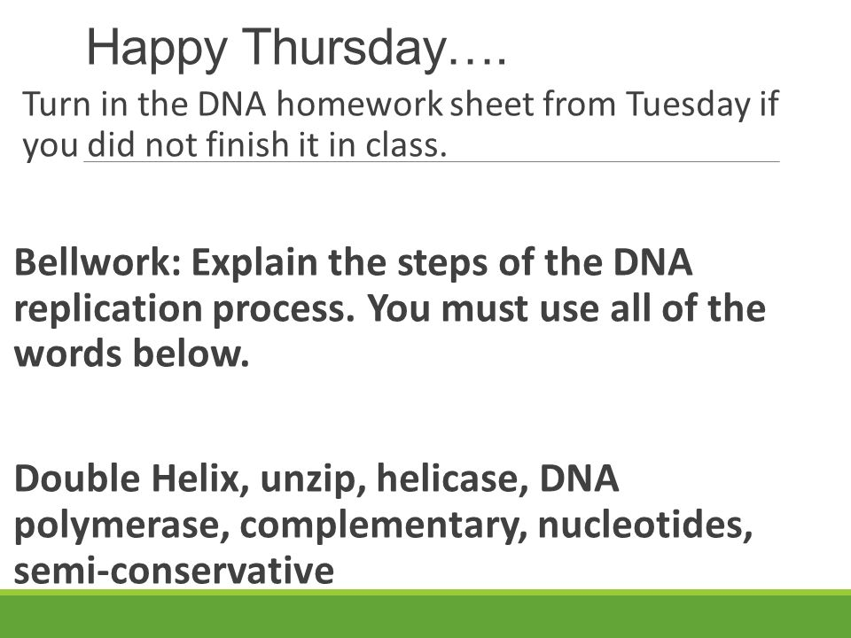 Dna homework sheet