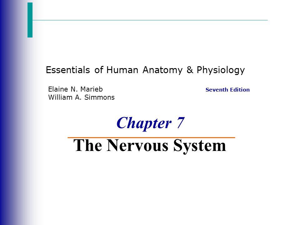 Essentials of Human Anatomy & Physiology Seventh Edition Elaine N ...