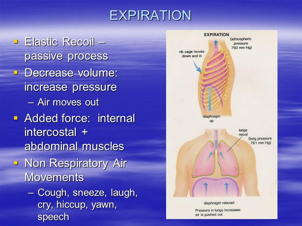 elastic recoil
