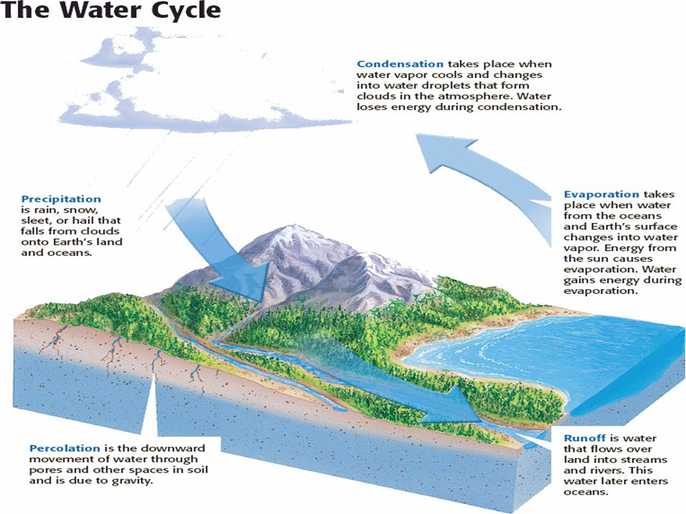 11.1 The Active River. Do you think a river can have a source ...