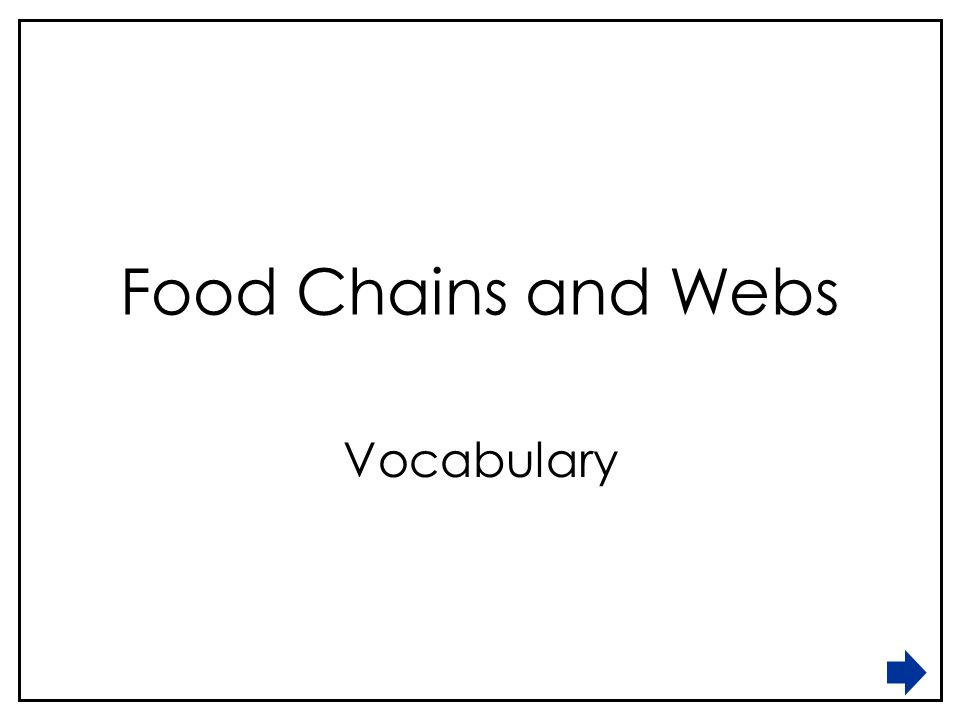 Food chains and webs vocabulary draw a line to match the terms with 1 food chains and webs vocabulary publicscrutiny Images