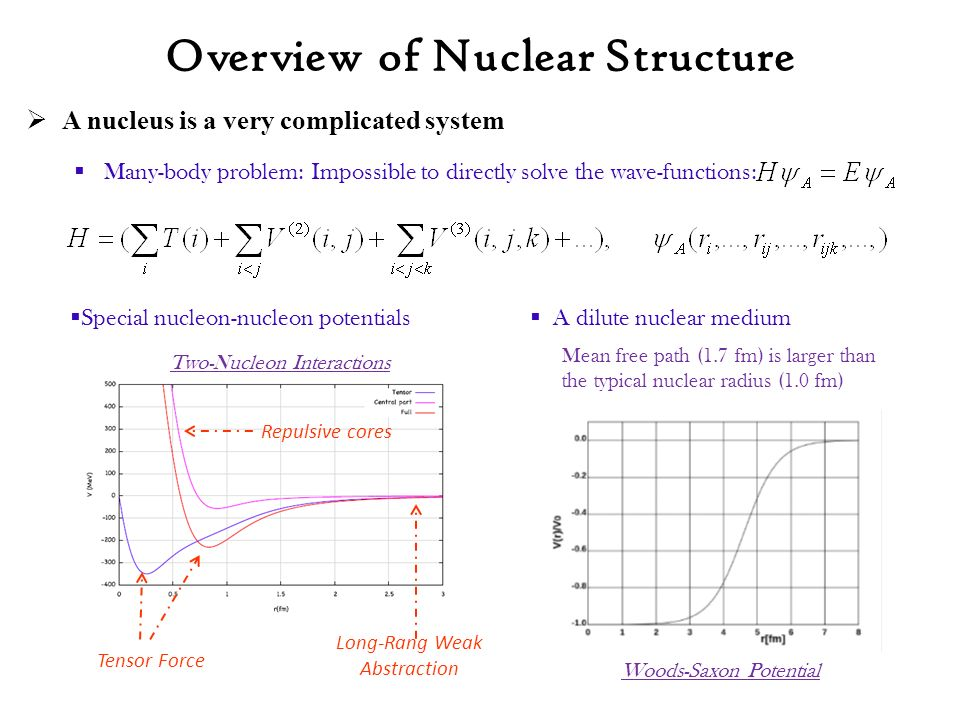  A nucleus is a very complicated system  Many-body problem: Impossible to directly solve the wave-functions: Overview of Nuclear Structure  A dilute nuclear medium Long-Rang Weak Abstraction Tensor Force Repulsive cores Two-Nucleon Interactions Woods-Saxon Potential Mean free path (1.7 fm) is larger than the typical nuclear radius (1.0 fm)  Special nucleon-nucleon potentials