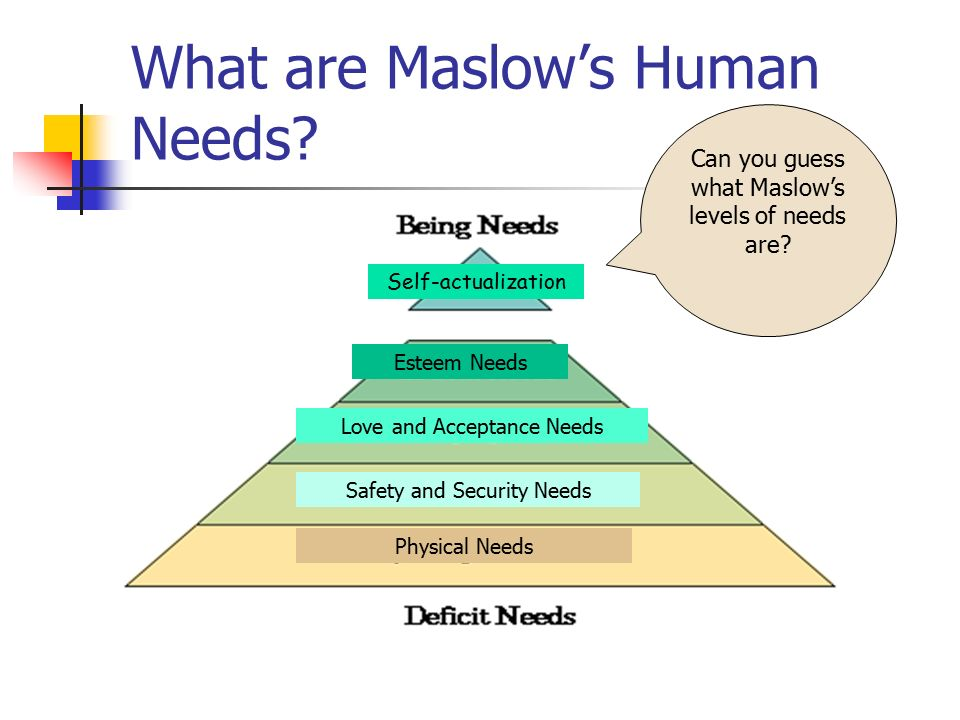 What are Maslow's Human Needs.