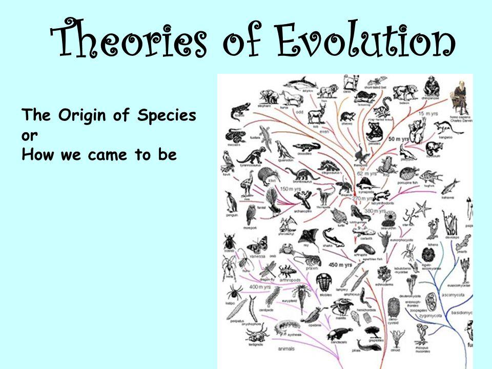 скачать игру Evolution Of Species - фото 6