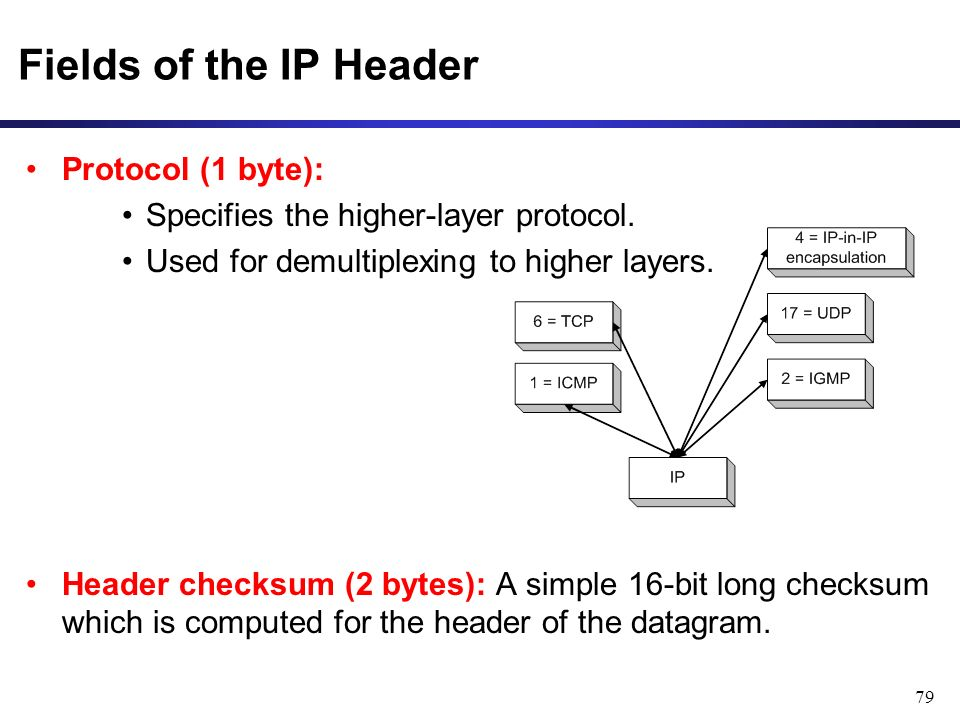 79 Fields of the IP Header Protocol (1 byte): Specifies the higher-layer protocol.
