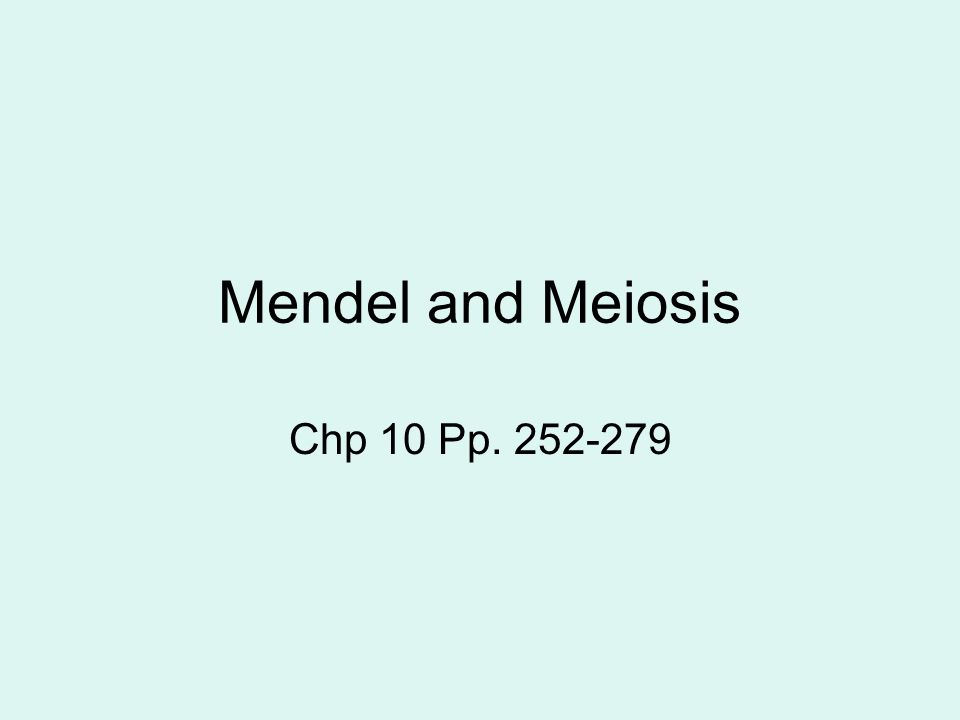 10 Mendel And Meiosis Worksheet Answers - resultinfos