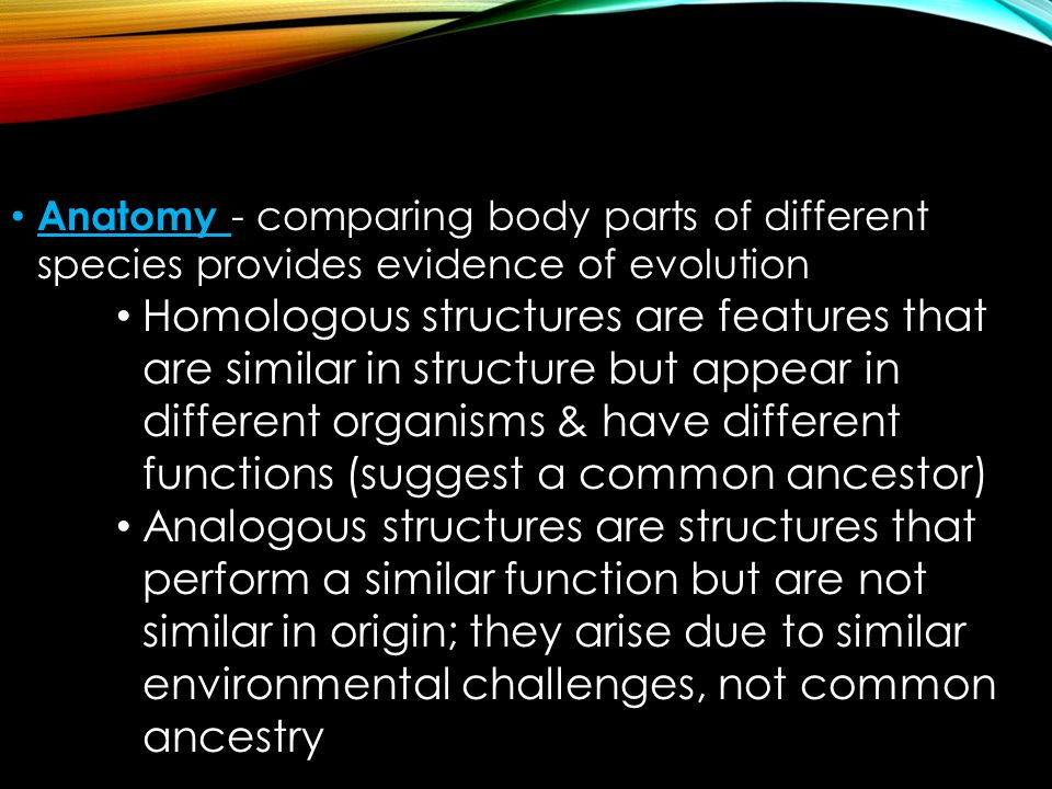 Anatomy - comparing body parts of different species provides evidence of evolution Homologous structures are features that are similar in structure but appear in different organisms & have different functions (suggest a common ancestor) Analogous structures are structures that perform a similar function but are not similar in origin; they arise due to similar environmental challenges, not common ancestry