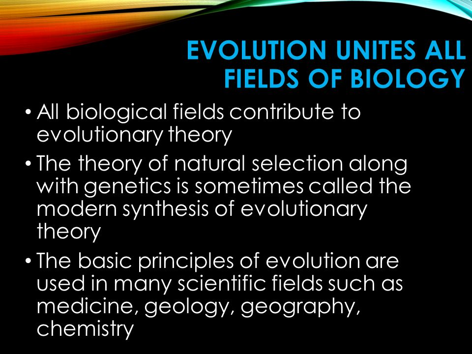 EVOLUTION UNITES ALL FIELDS OF BIOLOGY All biological fields contribute to evolutionary theory The theory of natural selection along with genetics is sometimes called the modern synthesis of evolutionary theory The basic principles of evolution are used in many scientific fields such as medicine, geology, geography, chemistry