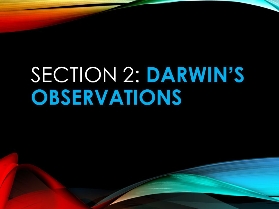 SECTION 2: DARWIN'S OBSERVATIONS