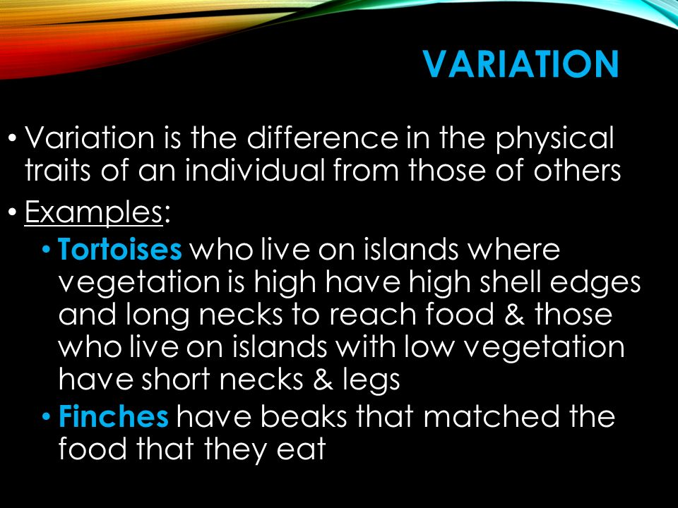 VARIATION Variation is the difference in the physical traits of an individual from those of others Examples: Tortoises who live on islands where vegetation is high have high shell edges and long necks to reach food & those who live on islands with low vegetation have short necks & legs Finches have beaks that matched the food that they eat