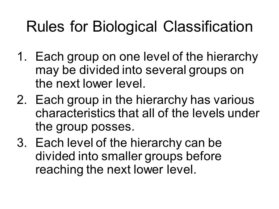 Rules for Biological Classification 1.Each group on one level of the hierarchy may be divided into several groups on the next lower level.