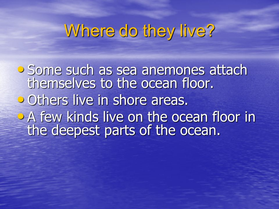 Where do they live. Some such as sea anemones attach themselves to the ocean floor.