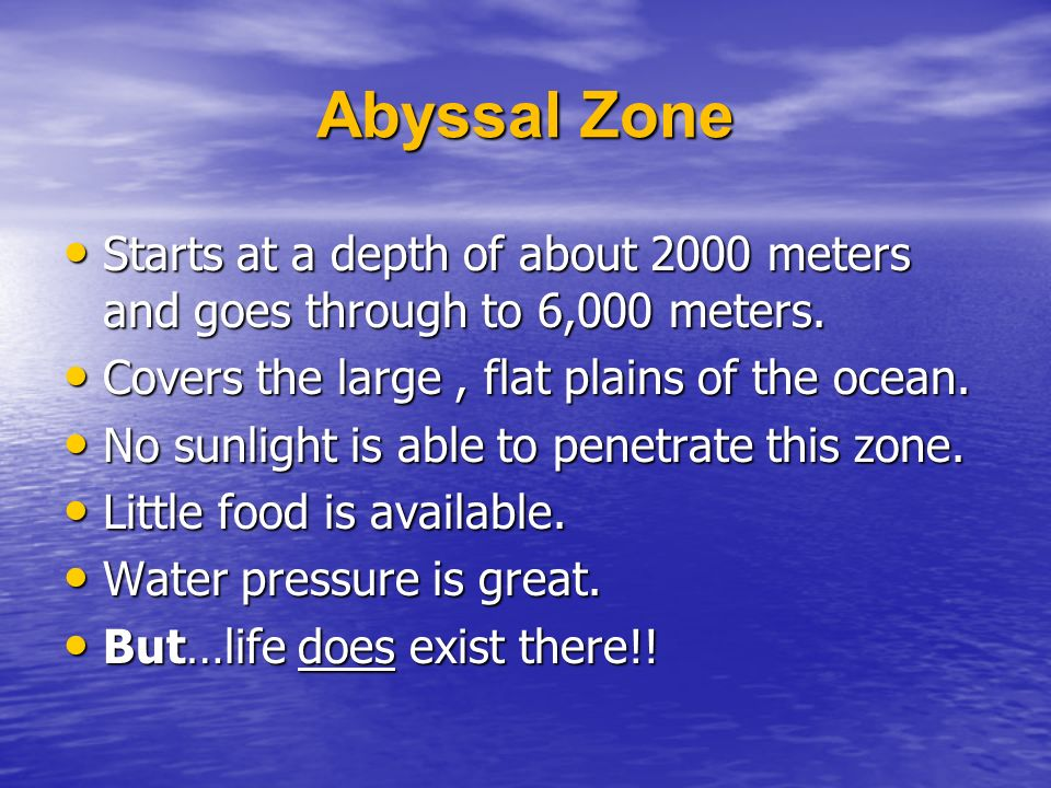 Abyssal Zone Starts at a depth of about 2000 meters and goes through to 6,000 meters.