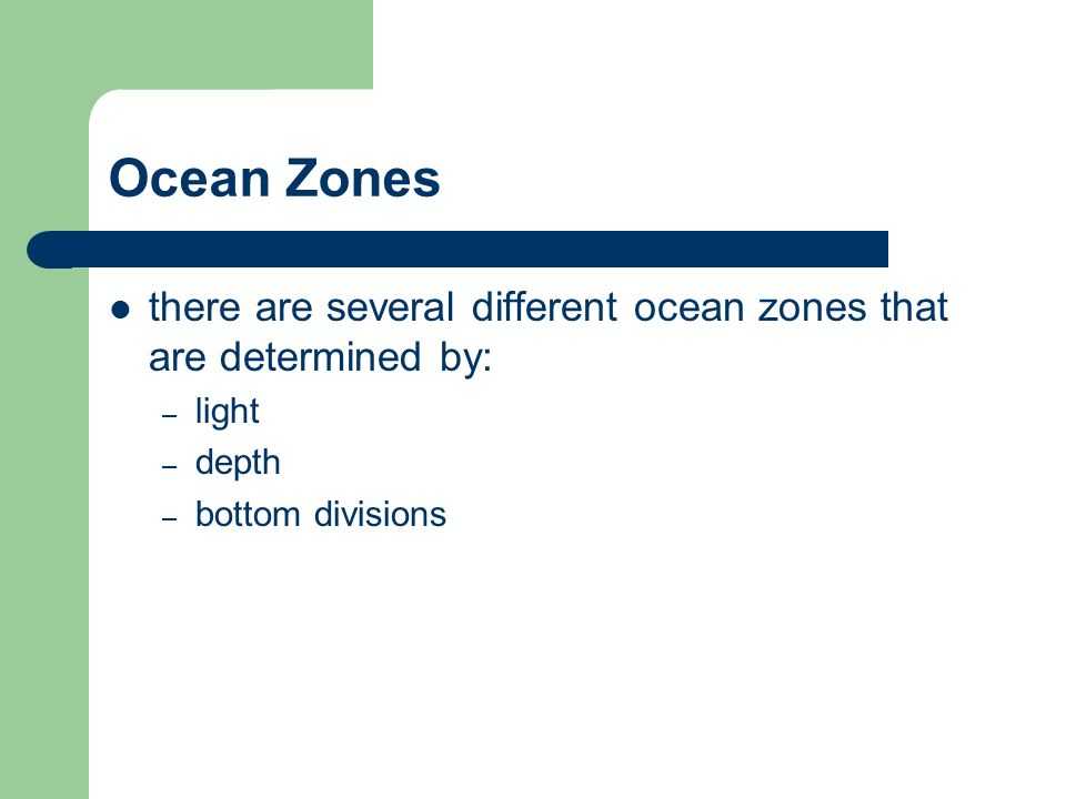 there are several different ocean zones that are determined by: – light – depth – bottom divisions
