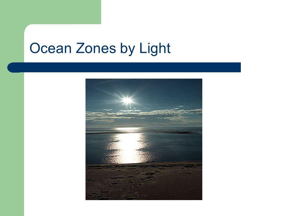 Ocean Zones by Light