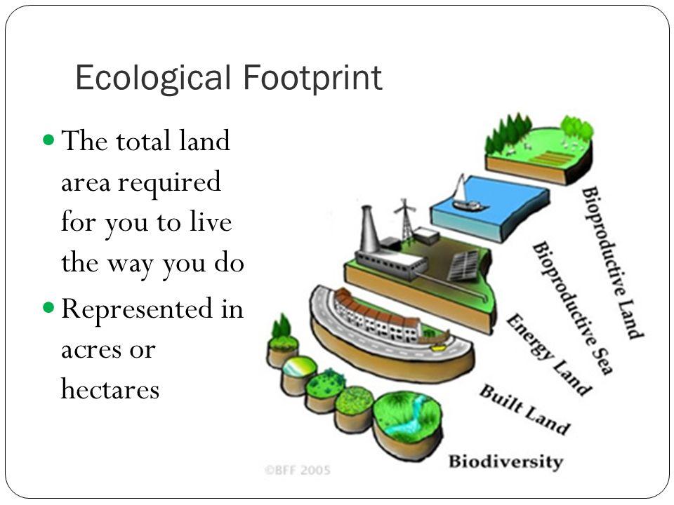essays on ecological footprints
