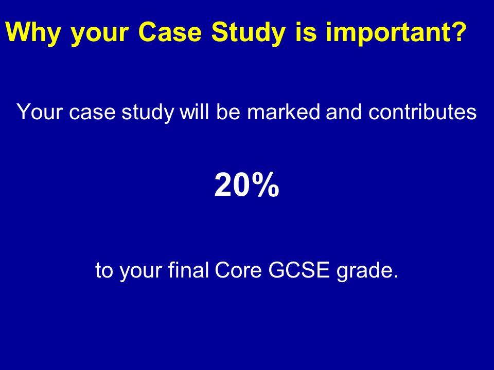 gcse media/essay