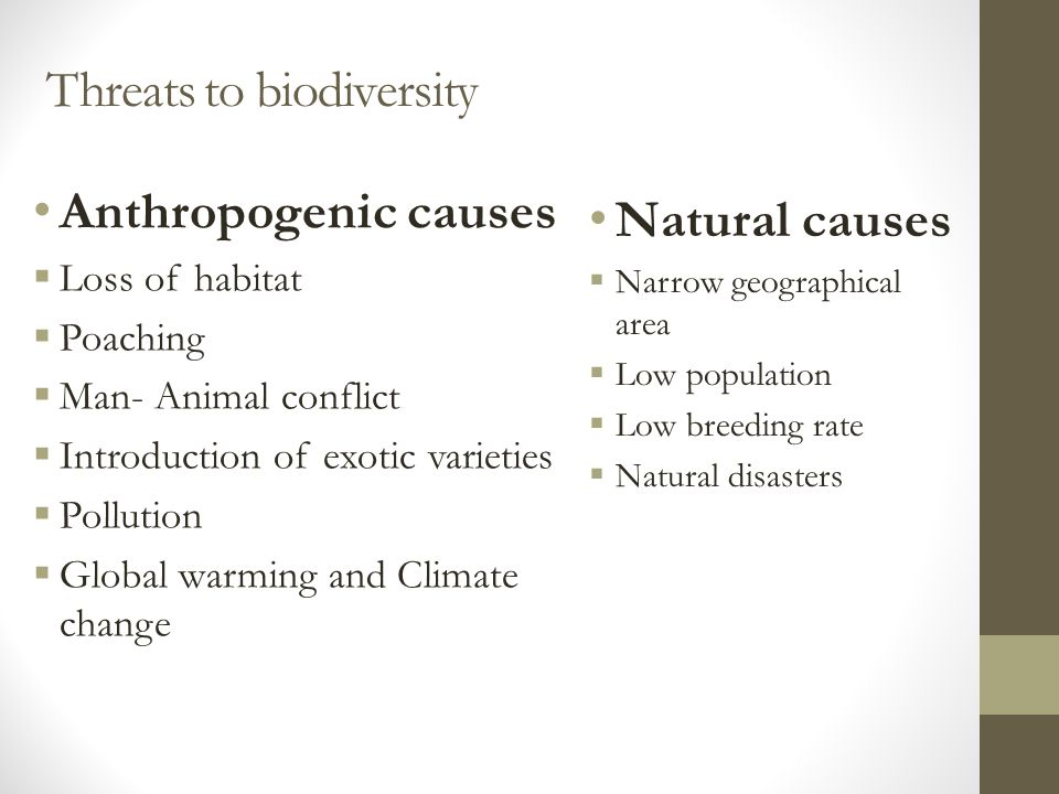 Threats to biodiversity Natural causes  Narrow geographical area  Low population  Low breeding rate  Natural disasters Anthropogenic causes  Loss of habitat  Poaching  Man- Animal conflict  Introduction of exotic varieties  Pollution  Global warming and Climate change