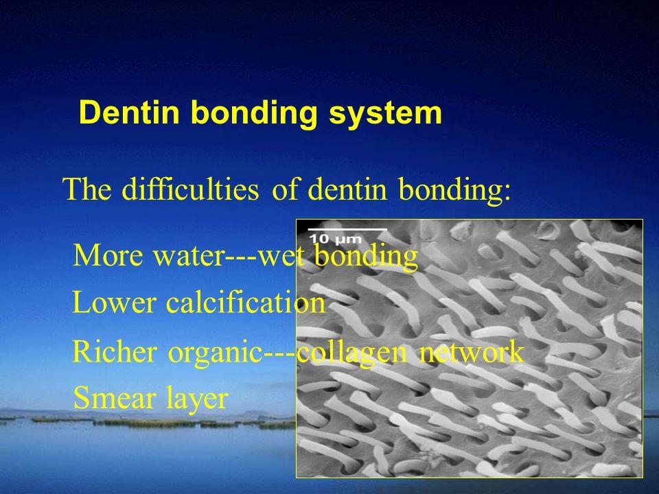 Dentin bonding system The difficulties of dentin bonding: More water---wet bonding Lower calcification Richer organic---collagen network Smear layer