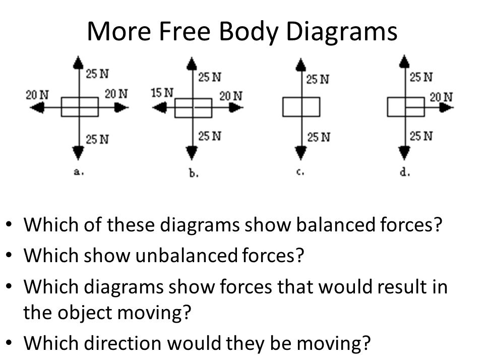 Printables Free Body Diagram Worksheet free body diagram worksheet fireyourmentor printable worksheets welcome rocketeers dq complete more diagrams which of