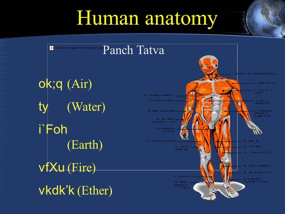 Human anatomy ok;q (Air) ty (Water) i`Foh (Earth) vfXu (Fire) vkdk'k (Ether) Panch Tatva