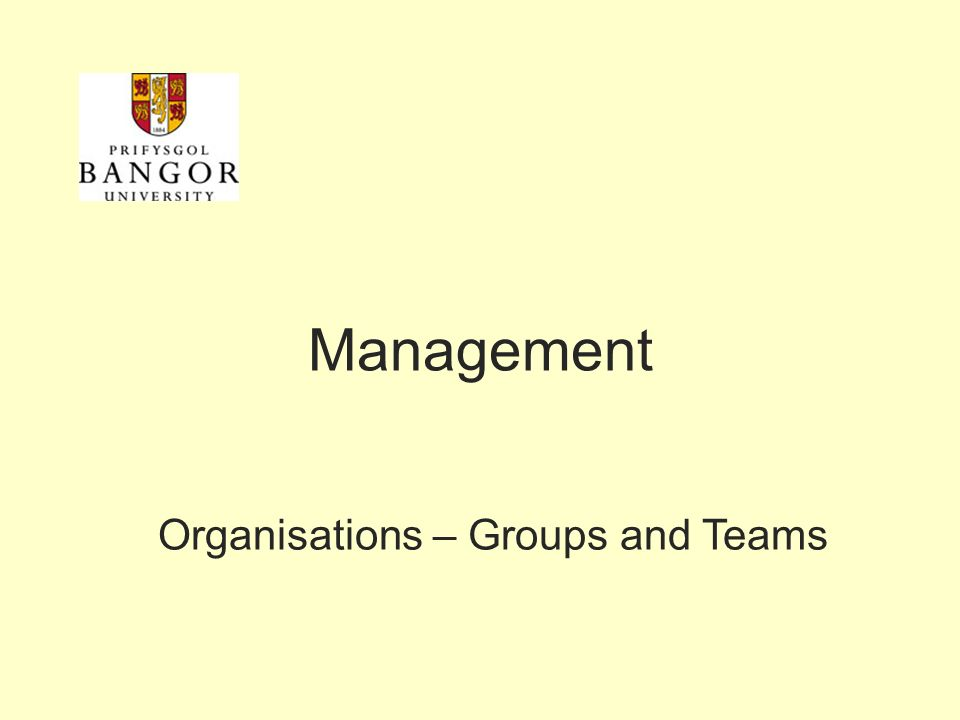 Management Organisations – Groups and Teams