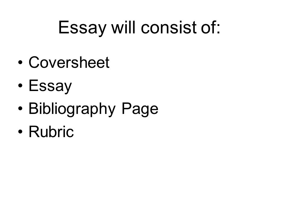Essay writing rubric for elementary students   kidakitap com