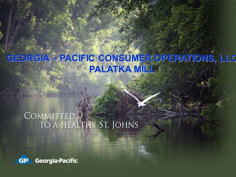 GEORGIA – PACIFIC CONSUMER OPERATIONS, LLC PALATKA MILL