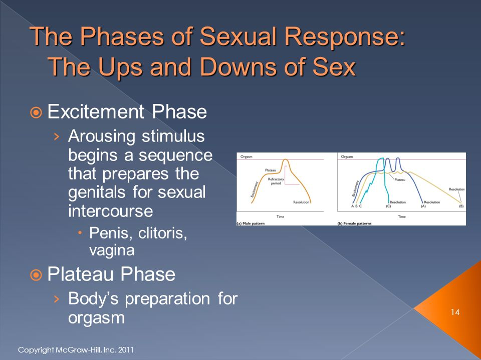  Excitement Phase › Arousing stimulus begins a sequence that prepares the genitals for sexual intercourse  Penis, clitoris, vagina  Plateau Phase › Body's preparation for orgasm 14 Copyright McGraw-Hill, Inc.