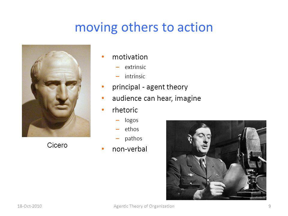 principal agent theory