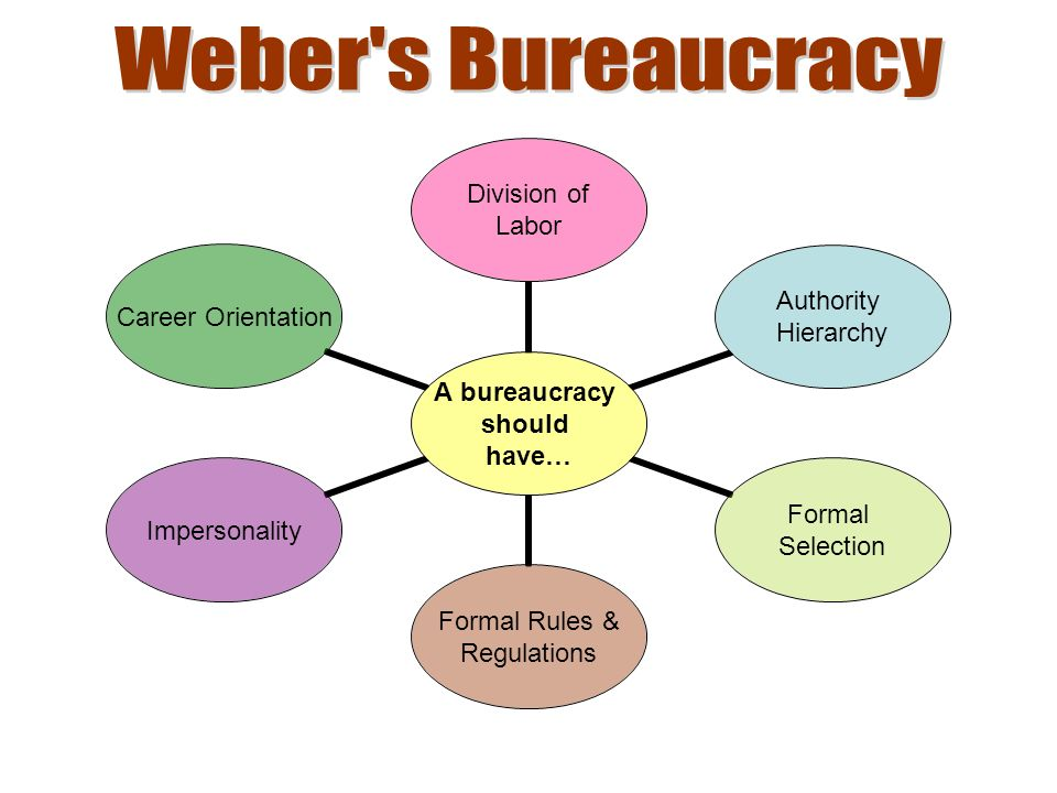 A bureaucracy should have… Division of Labor Authority Hierarchy Formal Selection Formal Rules & Regulations Impersonality Career Orientation