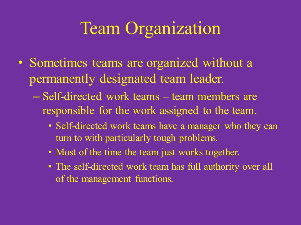 Team Organization Sometimes teams are organized without a permanently designated team leader.